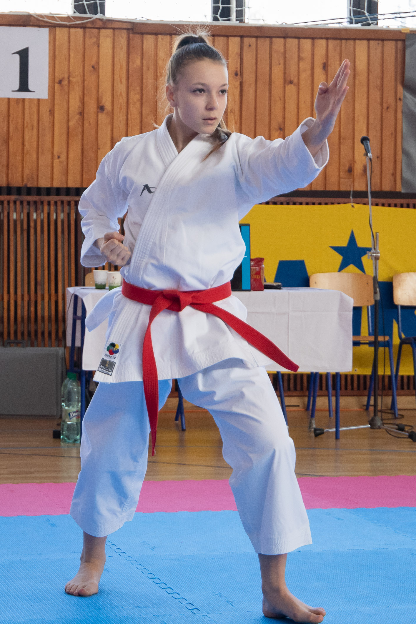 karate-zv-cup-216