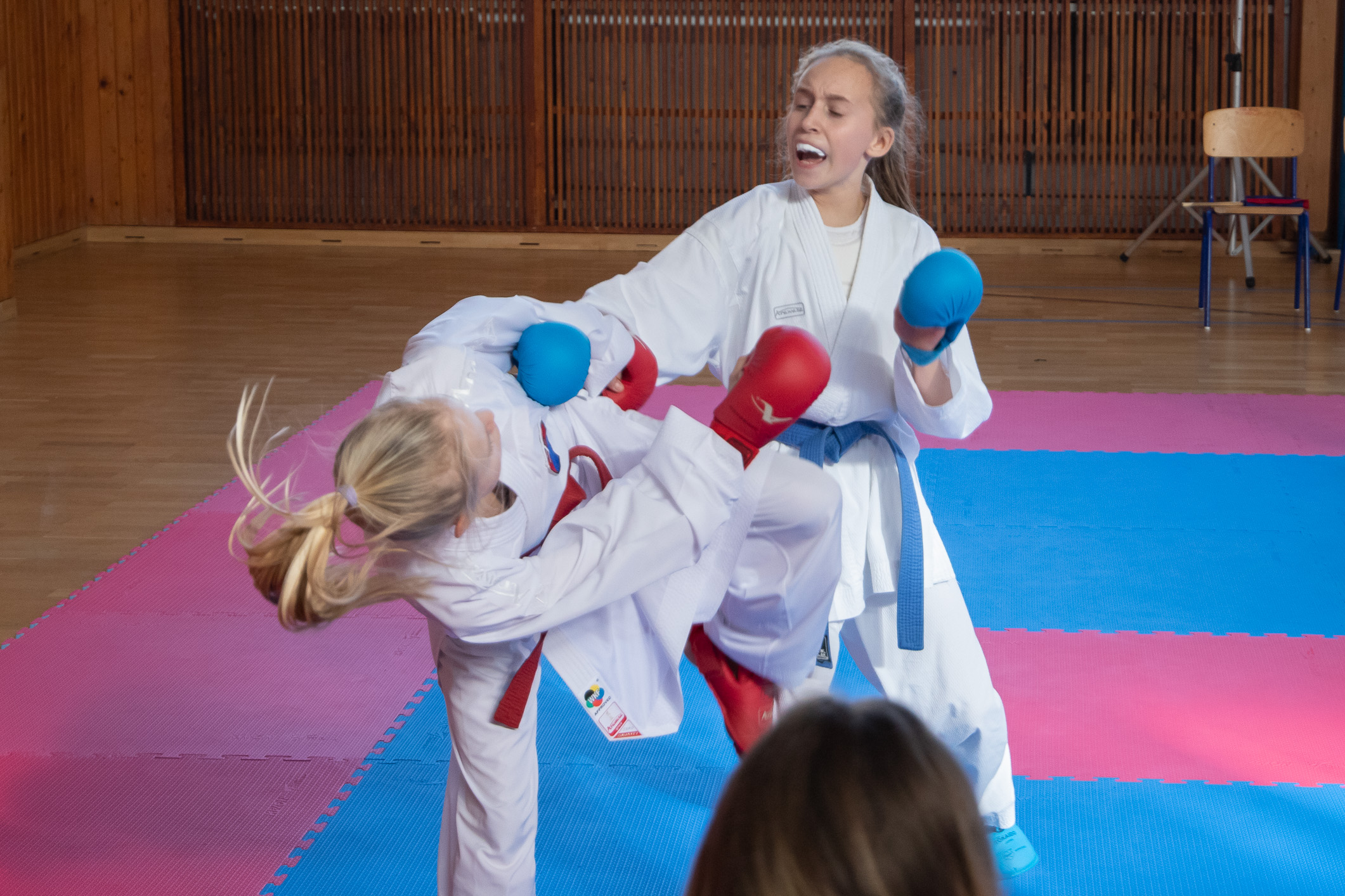 karate-zv-cup-230