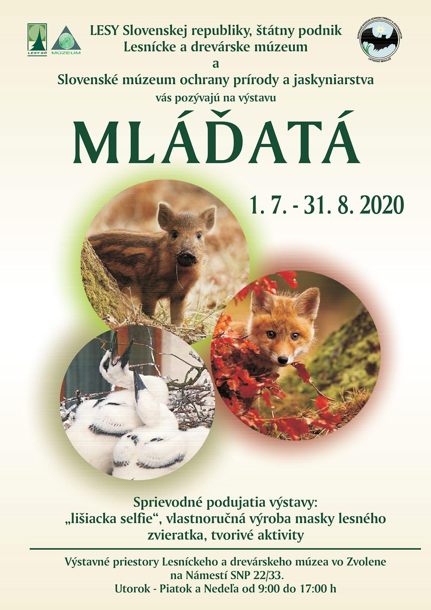 mladata-ldm-zv-plagat-2020