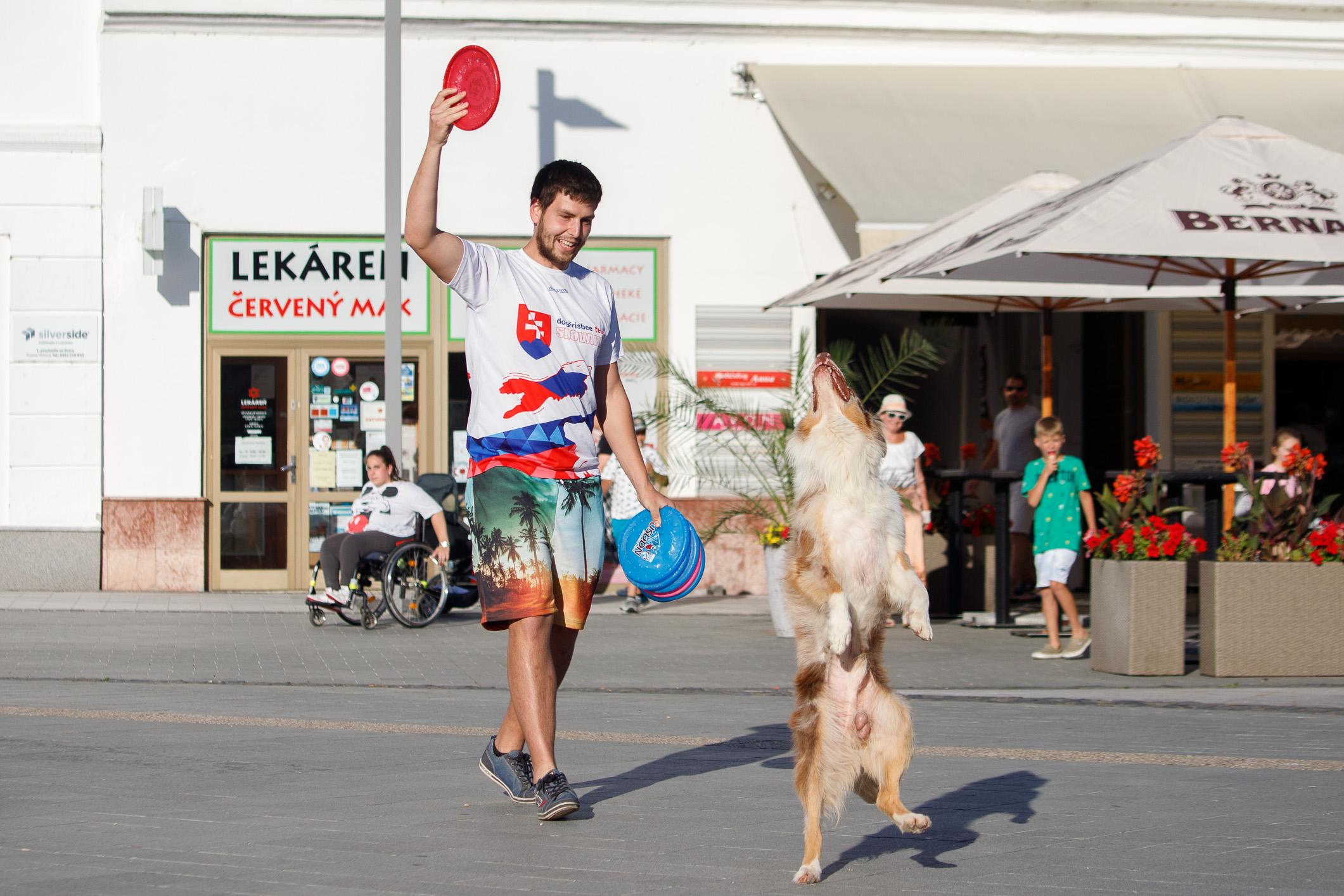 szocs-dogfrisbee-korzo-zv-20