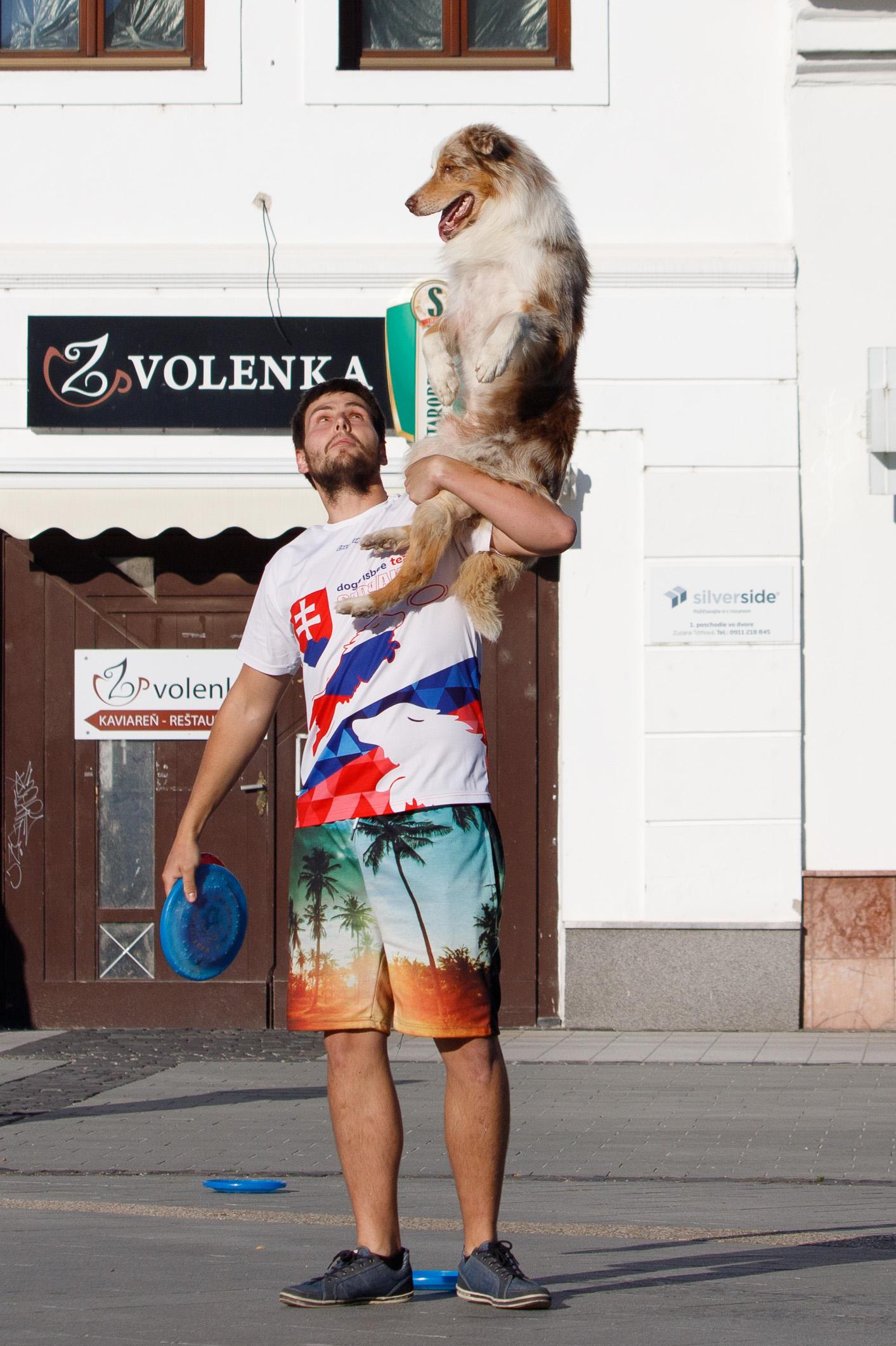 szocs-dogfrisbee-korzo-zv-24